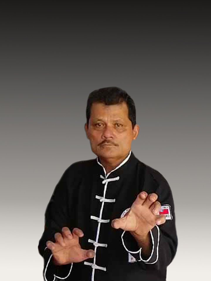 Adolfo Villegas